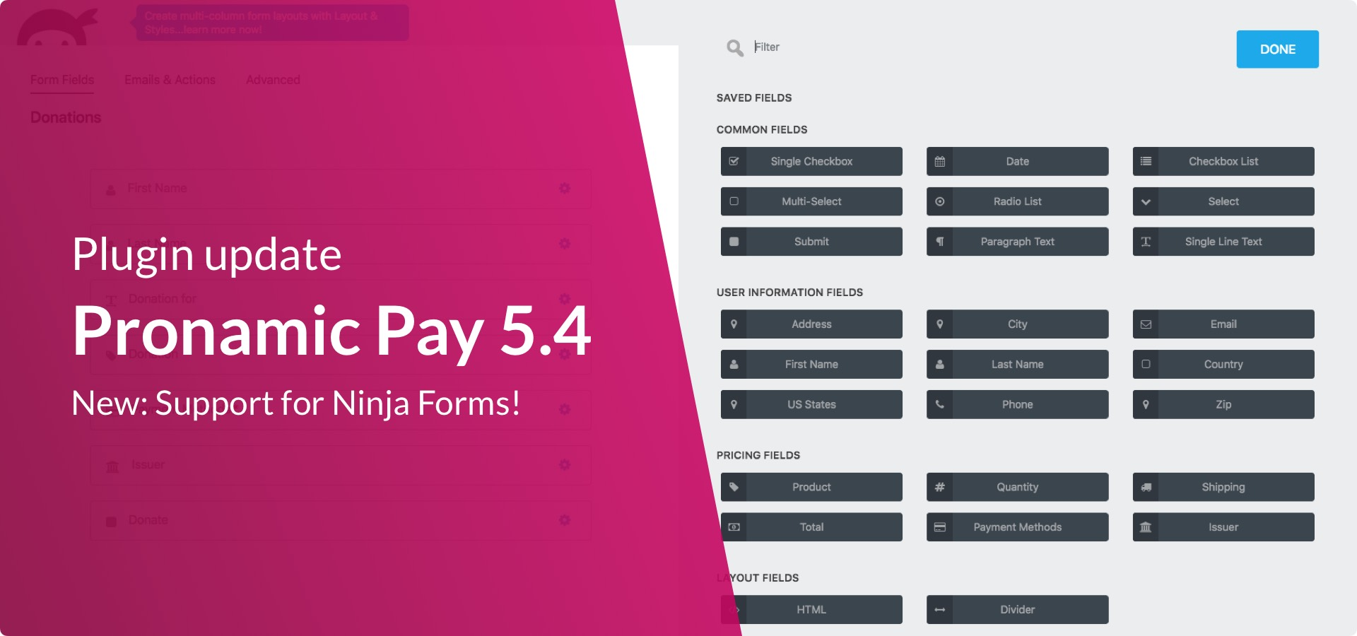 Pronamic Pay 5.4 Ninja Forms